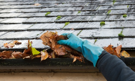 Gutter Cleaning for Homes from Leaf Relief Gutter Cleaning (Up to 52% Off). Three Options Available.