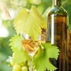 Up to 75% Off Winery Tour and Tastings