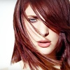 Up to 61% Off Haircare Packages in Santa Rosa