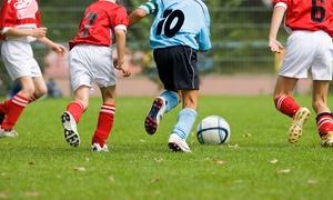 Centro Sportivo Talamonti: Affitto campo di calcio fino a 2 ore per 8 o 11 persone da Centro Sportivo Talamonti (sconto fino a 83%)