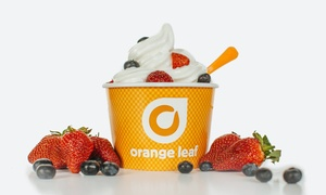 Orange Leaf Frozen Yogurt: Frozen Yogurt at Orange Leaf (40% Off). Six Options Available.