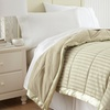 Down Alternative Blankets by CHT Home