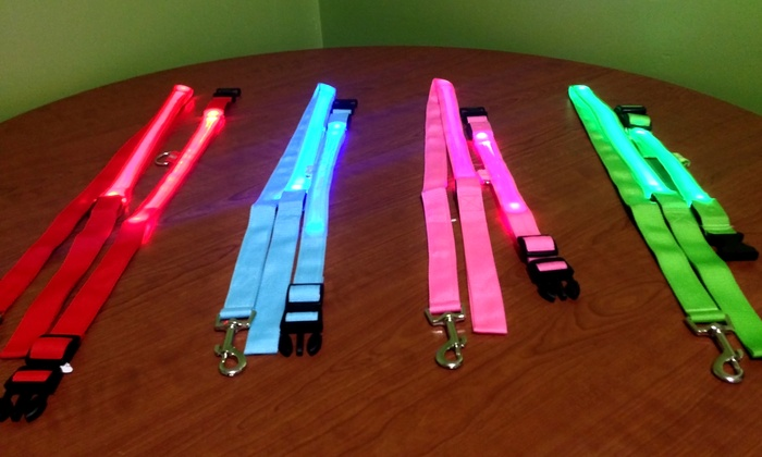 The LED Guyz - Multiple Locations: $12for $20 Worth of LED Pet Collars from The LED Guyz
