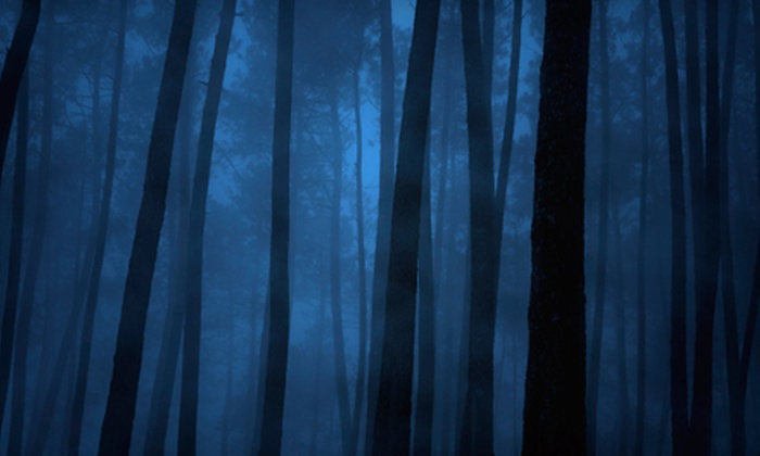 The Haunted Forest - Killearn Estates: Haunted-Attraction Visit for Two or Four at The Haunted Forest (Up to 55% Off)