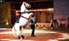 The Dancing Horses Theater - Delavan: $17 for a Horse and Exotic-Bird Show and Backstage Tour at The Dancing Horses Theatre (Up to $35 Value)