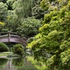 Up to 32% Off a Visit to the Japanese Garden