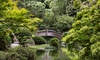 Fort Worth Botanic Garden - Fort Worth: Admission to the Japanese Garden for Two or Four at Fort Worth Botanic Garden (Up to 32% Off)