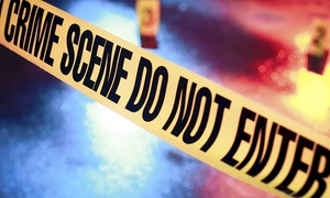 Online Academies: Forensic Science Psychologyand Profiling Course for €24 with Online Academies (90% Off)