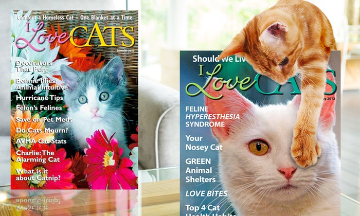 I Love Cats Magazine 1-Year Subscription: 1-Year, 4-Issue Subscription to I Love Cats Magazine