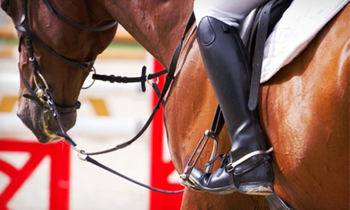 D&D Stables - Lake View Terrace: One, Three, or Six Private English Hunter-Jumper Horseback-Riding Lessons at D&D Stables (Up to 62% Off)