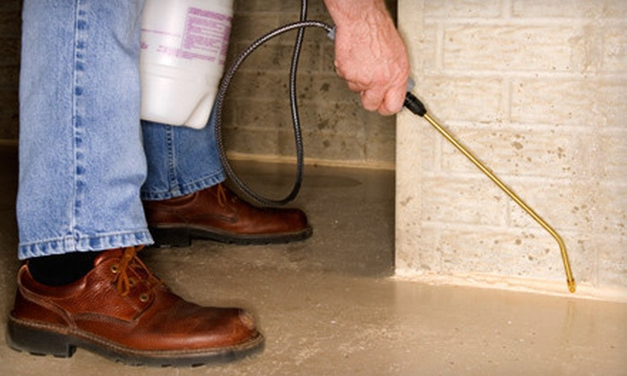S.T.E.P.S Pest Control - Jacksonville: Pest-Control Treatment for the Exterior, Interior, or Both from S.T.E.P.S Pest Control (Up to 67% Off)