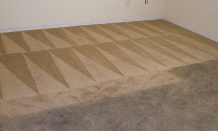 Euro Green Cleaning Service - Phoenix: $80 for $200 Worth of Rug and Carpet Cleaning — Euro Green Cleaning Service