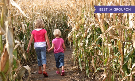 Fun-Farm Visit for Two or Four with Friendly Fire Game at Calgary Corn Maze & Fun Farm (Up to 45% Off)