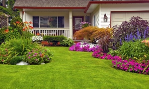 Otto's Landscaping & Lighting Contractors, LLC: $50 for $100 Worth of Landscaping from Otto's Landscaping & Lighting Contractors, LLC ($100 Value)
