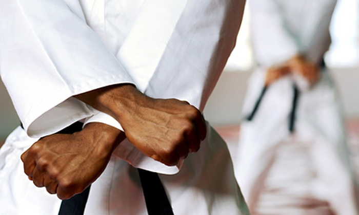 USA Karate - Lincoln: One Month of Unlimited Children's Karate Classes with Optional Uniform at USA Karate (Up to 54% Off)
