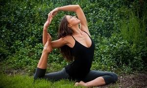 The Yoga Collective: $45 for 10 Yoga Classes at The Yoga Collective ($130 Value)