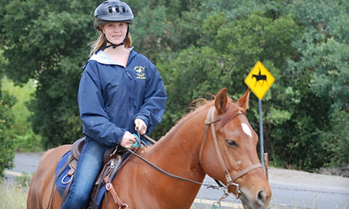 Castle Rock Arabians - Pine Creek: One, Three, or Five One-Hour Private Horseback-Riding Lessons at Castle Rock Arabians in Walnut Creek (Up to 63% Off)