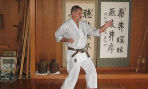 Traditional Okinawan Karate: $19 for $75 Worth of Martial-Arts Lessons — Traditional Okinawan Karate