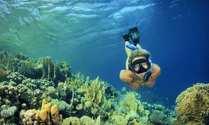 Pearl Harbor Divers - Ala Moana - Kakaako: Snorkeling Tour for Two or Four, or Private Snorkeling Tour for Eight from Pearl Harbor Divers (Up to 61% Off)