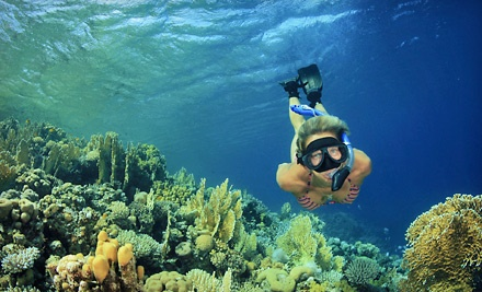 Snorkeling Tour for Two or Four, or Private Snorkeling Tour for Eight from Pearl Harbor Divers (Up to 61% Off)