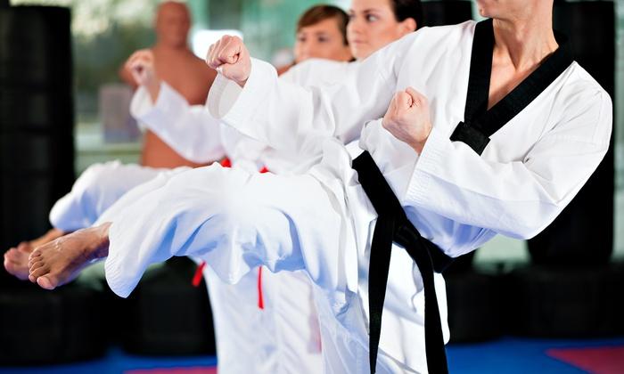 Villari's Martial Arts - Lake Forest: 10 or 20 Martial-Arts Classes with a Private Consultation at Villari's Martial Arts (Up to 91% Off)