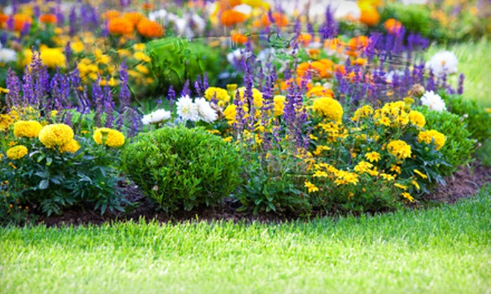 Garden World of Virginia - Sully: $20 for $40 Worth of Plants and Gardening Supplies at Garden World of Virginia