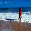 Up to 54% Off Daufuskie Island Beach Day in Savannah