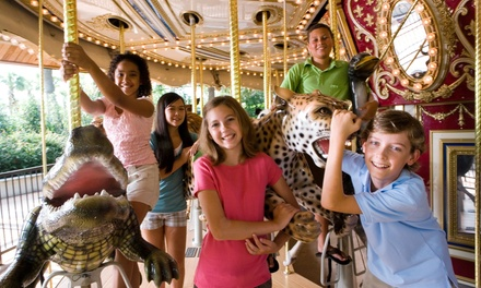 $29 for a 2015 Family Season Pass at PNC Carousel ($50 Value)