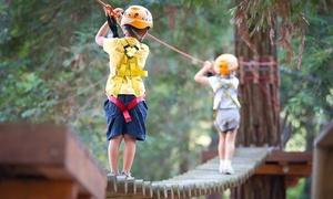 Erlebniswelt-Velburg: 3 Std. Aufenthalt im Klettergarten für Erwachsene, opt. mit Kindern, in der Erlebniswelt-Velburg (bis zu 63% sparen*)