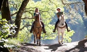 ranch eldorado: 2 heures de promenade à cheval pour 1 ou 2 personnes, adulte ou enfant dès 15 € avec le Ranch Eldorado