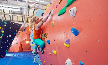 £10 for One Session of Indoor Climbing with Introduction and a Full-Day Pass at The Arch Climbing Wall North (70% Off) (London)