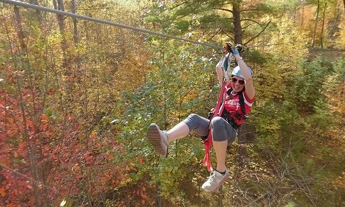 Northwoods Zip Line Tour - Northwoods Zip Line Tour: 2.5-Hour Zip Line Canopy Tours for Two or Four from Northwoods Zip Line Tour (Up to 31% Off)