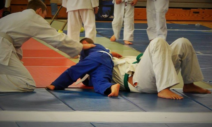 Costa Athletics - Wright Area Action Group: $49 for $150 Worth of Martial-Arts Lessons — Costa Athletics