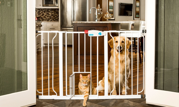 Walk-Through Pet Gate with a Small Swing Door