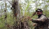 Everglades Nature Tours - Big Cypress National Preserve: Hiking Tours of the Everglades from Everglades Nature Tours (Up to 63% Off). Four Options Available.