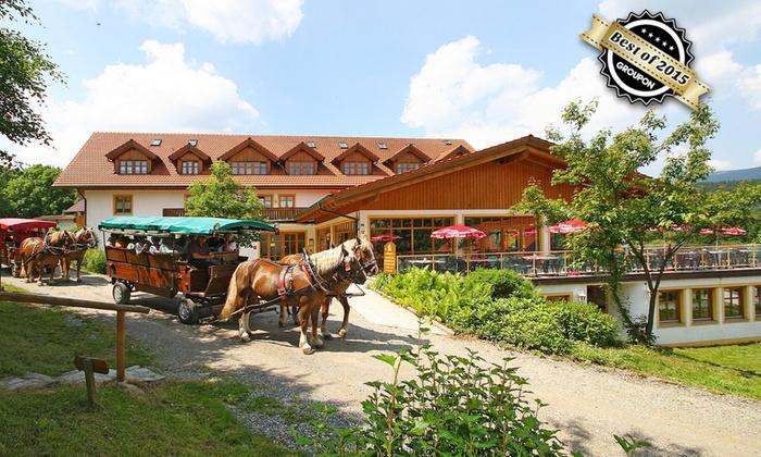 3 8 Tage Mit All Inclusive Im Bayerischen Wald Groupon