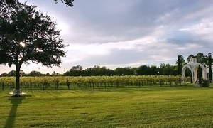 Haak Vineyards & Winery: Vineyard Tour for Two, Four, or Six with Credit for the Deli at Haak Vineyards & Winery (62% Off)