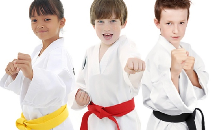 North County Martial Arts - Carlsbad: One Month of Beginners Karate Classes with Uniform for One or Two at North County Martial Arts (Up to 91% Off)