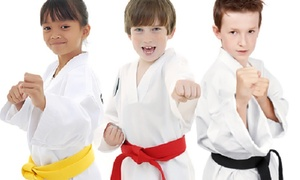 Martial Arts Alliance of San Diego: 10 Martial Arts Classes or 1 Month of Martial Arts Classes at Martial Arts Alliance of San Diego (Up to 86% Off)
