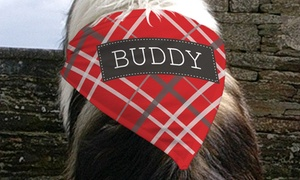 GiftsForYouNow.com: One or Two Personalized Dog Bandanas from GiftsForYouNow.com (Up to 55% Off)