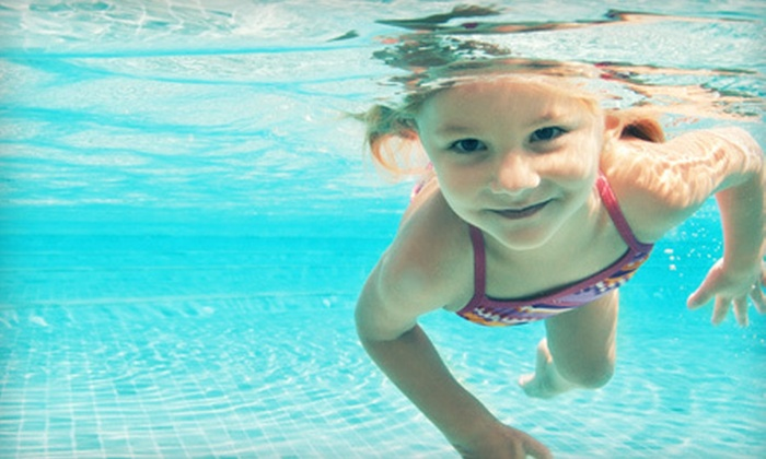 Lone Star Pools & Spas - North Fort Worth: One or Two Months of Complete Weekly Pool-Care Services from Lone Star Pools & Spa Service (Up to 84% Off)