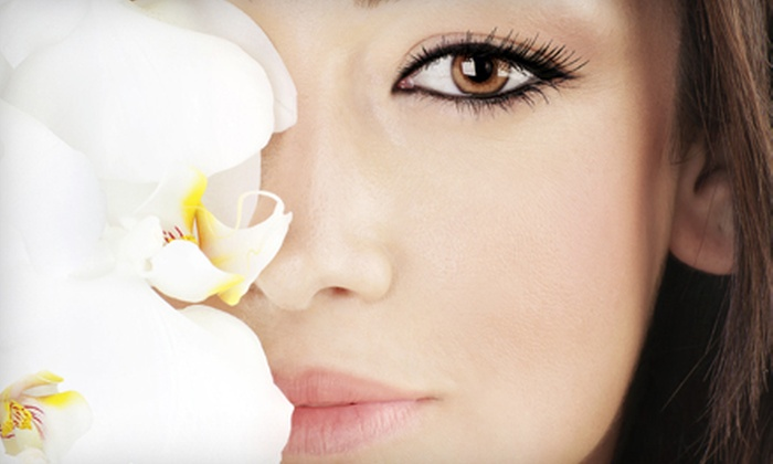 Sherry Bridges at Natural Look Permanent Cosmetics - La Jolla: Permanent Makeup from Sherry Bridges at Natural Look Permanent Cosmetics (Up to 67% Off). Three Options Available.