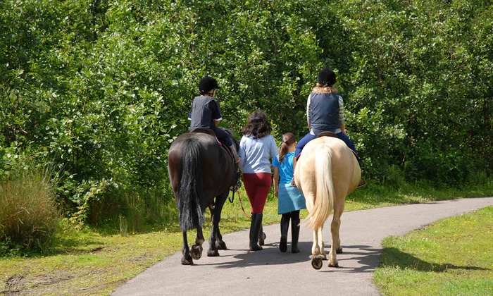 In The Breeze Ranch - Tampa: One Day of Horseback-Riding Camp for One or Two Children at In The Breeze Ranch (Up to 53% Off)