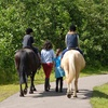 Up to 53% Off Horseback-Riding Camp