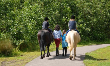 One Day of Horseback-Riding Camp for One or Two Children at In The Breeze Ranch (Up to 53% Off)