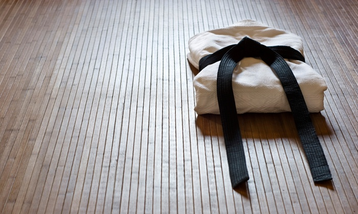Richmond Aikido Kai - The Fan: $26 for 1 Month of Unlimited Dojo Classes or 10 Drop-In Classes, with Training Shirt at Richmond Aikido Kai ($60 Value)