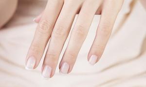 Classy Nails Salon: Up to 33% Off Mani-Pedis & No-Chip Manicures at Classy Nails Salon