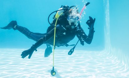 Beginners' Scuba Diving Lesson for Two at DV Diving (33% Off)
