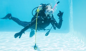 DV Diving: Beginners' Scuba Diving Lesson for Two at DV Diving (33% Off)
