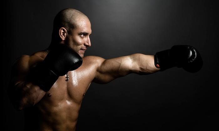 Ace of Spades Boxing - Bonita: Four- or Eight-Week Boxing Boot Camp at  Ace of Spades Boxing (Up to 51% Off)